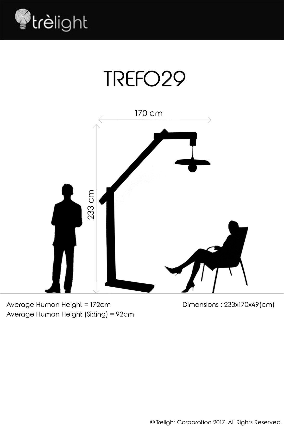 tref29d